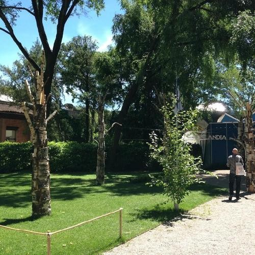 British Raves, Finnish Trees, & Other Notes From My Venice Biennale Sweep