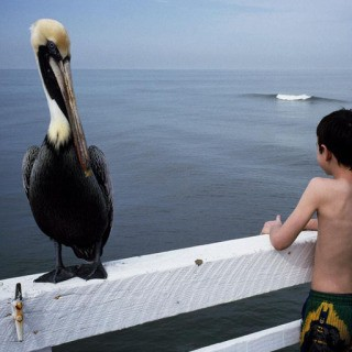 Daytona Beach, Florida. 1997, by Constantine Manos