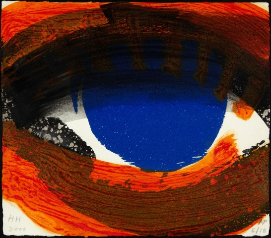 Sir Howard Hodgkin, Eye