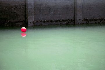 Jessica Backhaus Harbor art for sale