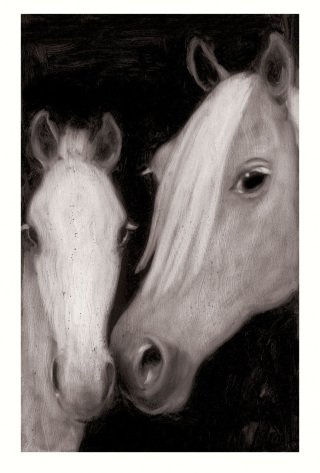 Mare &amp; Foal , by Joe Andoe