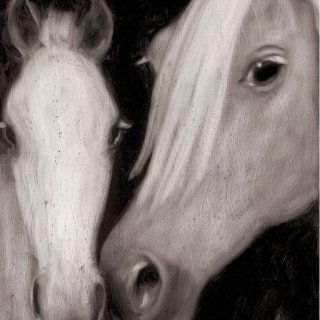 Mare & Foal , by Joe Andoe