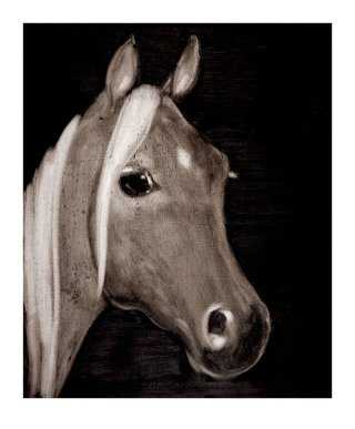 Spanish Horse, by Joe Andoe