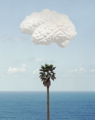 Brain/Cloud (With Seascape and Palm Tree), by <a href='/site-admin/artists/artist/343'>John Baldessari</a>