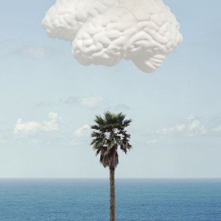 Brain/Cloud (With Seascape and Palm Tree), by John Baldessari