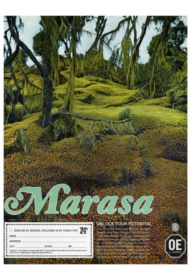 "Freeman and Lowe , Marasa Advertisement (""Unlock Your Potential"" Campaign, 1974)"