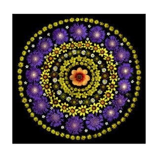 Dahlia Coreopsis Target art for sale