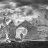 Sebastião Salgado, Fortress of Solitude, from the series Genesis