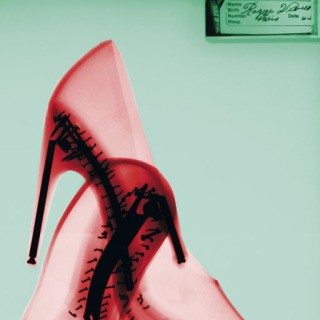 Steve Miller, Roger Vivier Red