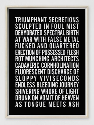 Steven Shearer Poem for Venice Fundraising Print art for sale