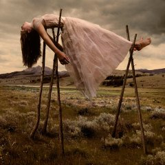 Prom Gown #3, by Tom Chambers