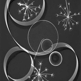 Werner Bischof, Zurich. Kunstgewerbeschule (School of Applied Arts). Photogram. 1935